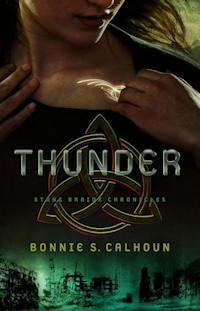 Thunder: A Novel (Stone Braide Chronicles